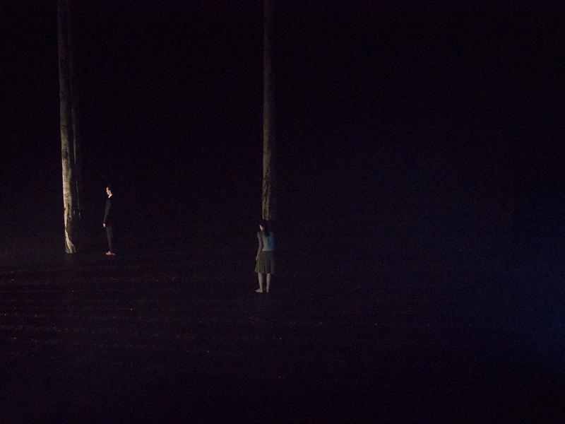 La Nuit Transfigurée